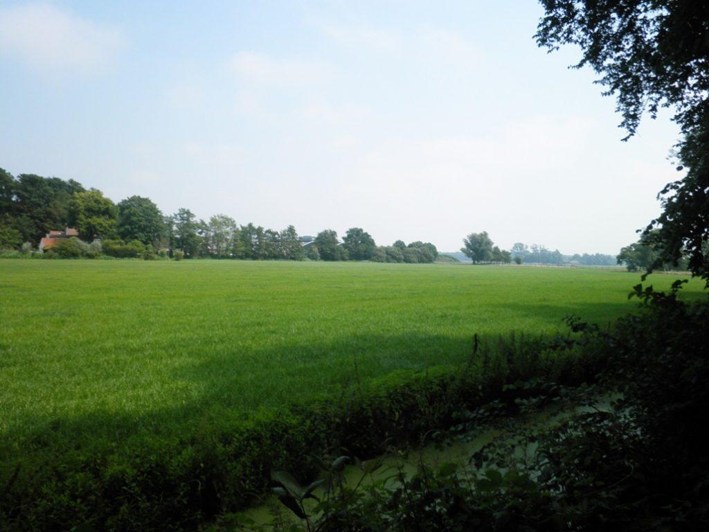 1.Blik in de polder vanaf het eind van de straat Het Kerkehout. Links 'Oud Pluymestein', diep in de polder de leegstaande boerderij van Staatsbosbeheer.